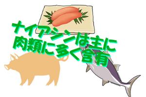 ビタミンB3(ナイアシン)が多い食品一覧|主に肉・魚介類