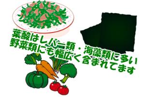 葉酸の多い食品一覧|海藻・レバー類の含有量が特に高い
