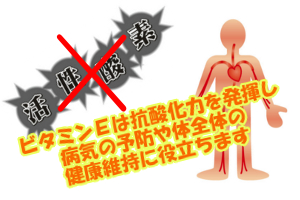 ビタミンEは強い抗酸化作用がある|血行を良くする効果もある