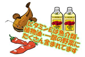 ビタミンEが多く含まれる食品一覧|主に魚介類や植物油