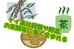 ケイ素が含まれた食品一覧|穀類や魚介類・お茶類に多い