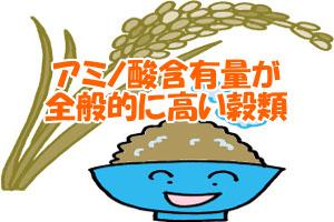 シスチンが含まれた食品|全体的に最も多いのは穀物類