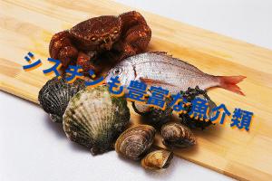 魚介類と藻類のシスチン含有量|全体的に多い方の食品分類
