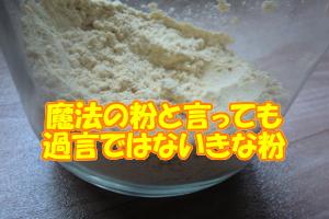 育毛食におすすめのきな粉|大豆をそのまま食べるより吸収率が良い