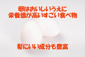 アミノ酸など栄養の宝庫である卵は育毛的にもおすすめの食品