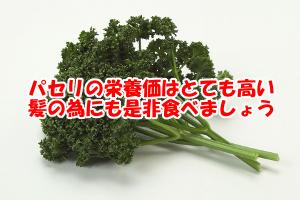 栄養価がとても豊富なパセリ|育毛的にもおすすめな緑黄色野菜
