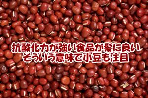 血液を綺麗にするなどの効能がある小豆|髪の為にもおすすめ