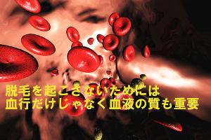 髪によくない栄養不足で質の悪い血液を作り出してしまう原因