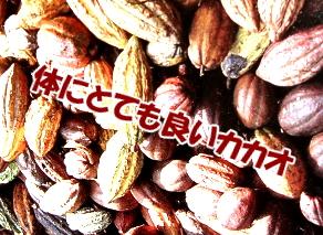 チョコレートと髪の関係|カカオポリフェノールがIGF-1を増やす