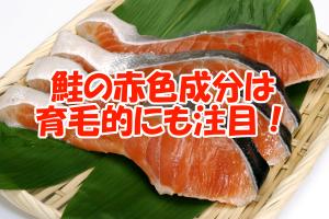 鮭に含まれるアスタキサンチン|強い抗酸化力の秘密はIGF-1