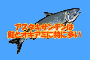アスタキサンチンを多く含む食品一覧|紅鮭やオキアミが特に豊富