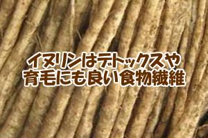 ゴボウなどの根菜類が髪にいい理由|全身にIGF-1が増加する