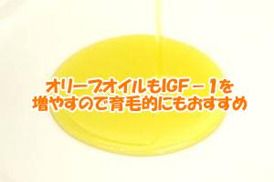 オリーブオイルの健康の秘密|オレイン酸がIGF-1を増やす