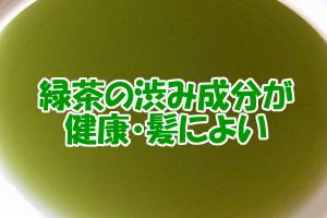 緑茶の渋み成分カテキン|優れた健康効果を発揮する理由はIGF-1