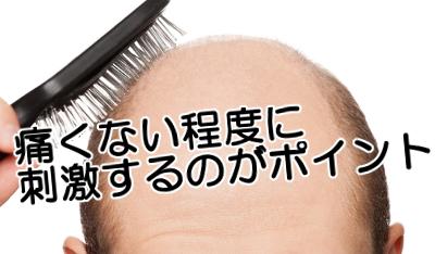 ブラシでツボを刺激する育毛対策|「漢方針ブラッシング療法」