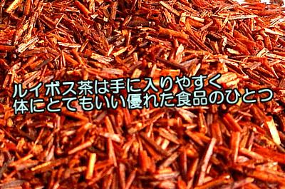 ルイボス茶は体にとてもいい食材の一つであり育毛剤の素材としても優秀である