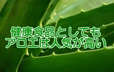 アロエ育毛剤はホワイトリカーを使うことで簡単に作ることができる