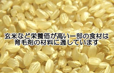玄米美髪水は材料集めが手間ですが髪にとって有用な栄養素を多く含む