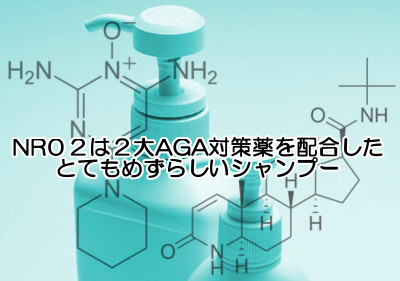 2大AGA対策成分を唯一配合したポラリスnr02シャンプー