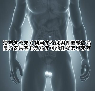 男性機能の回復に役立つとされる漢方薬も存在する