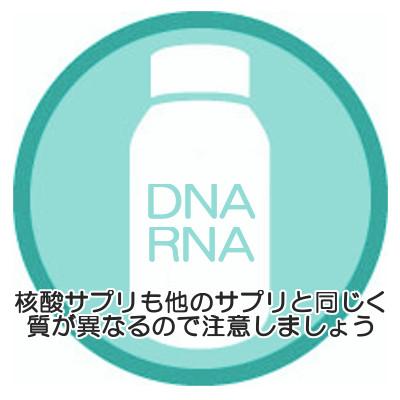 核酸サプリメントの選び方|体内に長く留まる高分子がポイント