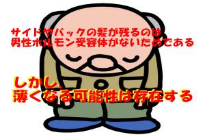 側頭部と後頭部がハゲにくいのは男性ホルモン受容体がないため