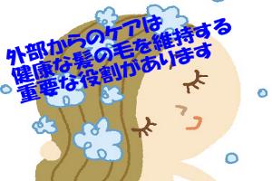 頭皮や髪のケアの役割は現状維持だが結果的に育毛に繋がります
