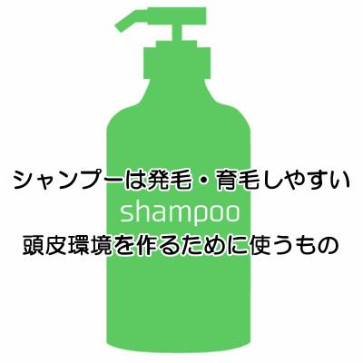 サプリメントは不足しがちな栄養素をいろいろ摂取できるので育毛的にも重要なアイテム