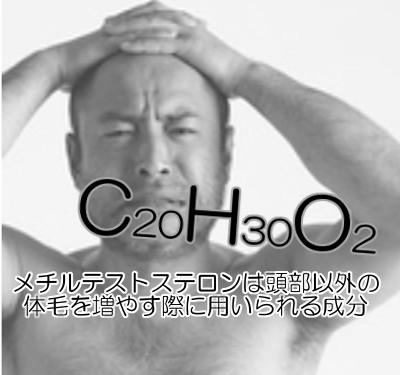メチルテストステロンは髪の毛以外の育毛剤に配合されている人口男性ホルモンである
