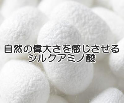 シルクアミノ酸はアミノ酸の含有量が非常に高いことから育毛の分野でも注目されている成分