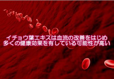 イチョウ葉エキスが薄毛対策になる理由|フラボノイドが血管を拡張