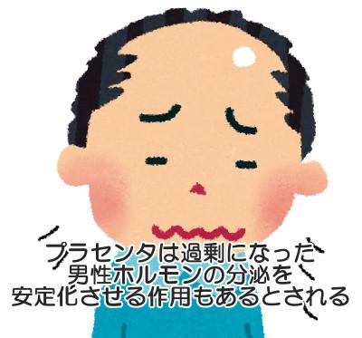 プラセンタのものすごい健康効果に注目!男性の育毛にも大きく貢献