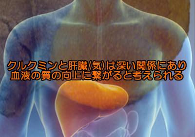 ウコンに含まれるクルクミンは様々な病気予防効果と薄毛の予防的な効果も期待される成分のひとつ
