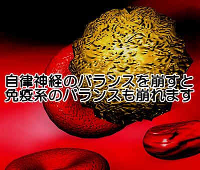 自律神経が狂うと薄毛を促す|顆粒球が増えて毛根組織に害を与える