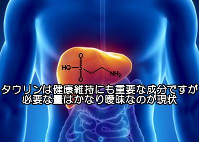 タウリンの摂取量と副作用について|無闇に摂る必要はありません