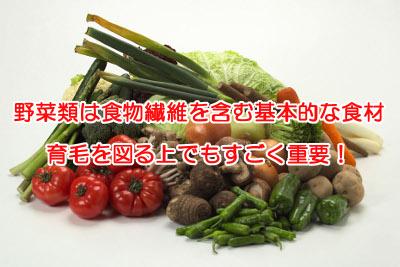 野菜に含まれる食物繊維量の一覧表|含有量が全体的に豊富