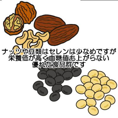 ナッツ類はセレンを含んでいる以上に血糖値を上げず栄養価にも優れた食品である