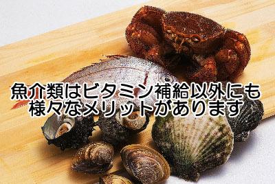 ビタミンb6を含む魚介類一覧表|最も種類が豊富な食品群