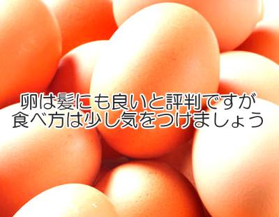 卵と育毛の関係について考える|栄養素は豊富だが食べ方に注意