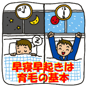 育毛において非常に重要な睡眠|就寝と起床の時間も大事