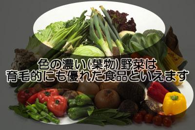 緑黄色野菜、特に濃い緑の葉物野菜はビタミンやミネラルの供給源になると同時に血糖値もほとんど上げない優れた育毛食品である