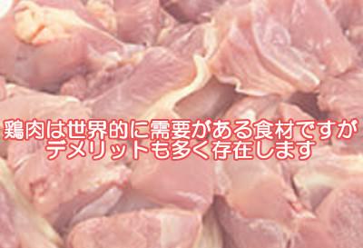 鶏肉は一般的に栄養価が高くヘルシーであると言われてますが体に悪いデメリット部分は全然語られていません