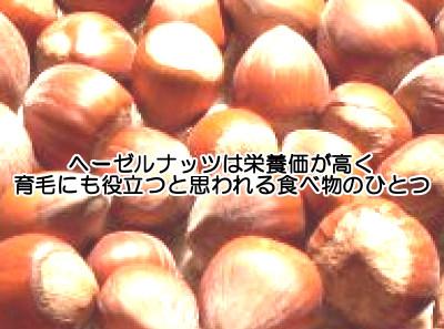ヘーゼルナッツは育毛の為になる栄養素(ビタミンEとオレイン酸)が多い