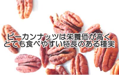 ピーカンナッツは育毛的にも注目のビタミンEなどの抗酸化物質が多い