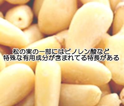 松の実(特に五葉松)には特殊な栄養成分も含んでいることから育毛的にも役立つと期待できます