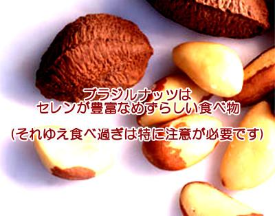 ブラジルナッツは育毛に貢献するか考察|セレンが食べ過ぎを抑制?