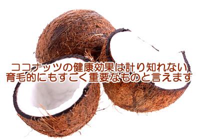ココナッツは最も育毛に貢献しうる食べ物|秘密は良質な飽和脂肪酸