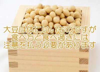 大豆は理想的な育毛食のひとつ?|欠点も含めて改めて考察します