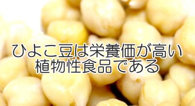 ひよこ豆はさすが豆類とあって栄養価に富んでいるので髪の健康にも役立つと言える