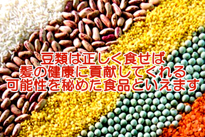 豆類と育毛の関係についての考察のまとめ|栄養が詰まった植物性食品